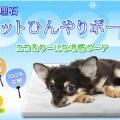 石専門店.com 楽天店 ペットひんやりボード